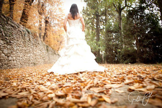 Wedding Day 25 novembre 2012